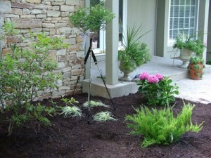 A manicured landscape adds beauty and value to your home