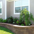 Retaining wall with weeping cherry
